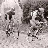 <strong>Eddy Temmerman </strong><br> ©Herzele in Beeld<br><br><a href='https://www.herzeleinbeeld.be/Foto/1820/Eddy-Temmerman-'><u>Meer info over de foto</u></a>