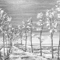<strong>Kunstschilder Georges Muys - Tentoonstellingen  1973 & 1975</strong><br>01-01-1975 ©Herzele in Beeld<br><br><a href='https://www.herzeleinbeeld.be/Foto/2073/Kunstschilder-Georges-Muys---Tentoonstellingen--1973-&-1975'><u>Meer info over de foto</u></a>