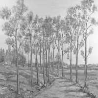 <strong>Kunstschilder Georges Muys - Tentoonstellingen  1973 & 1975</strong><br> ©Herzele in Beeld<br><br><a href='https://www.herzeleinbeeld.be/Foto/2076/Kunstschilder-Georges-Muys---Tentoonstellingen--1973-&-1975'><u>Meer info over de foto</u></a>
