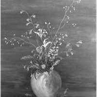 <strong>Kunstschilder Georges Muys - Tentoonstellingen  1973 & 1975</strong><br> ©Herzele in Beeld<br><br><a href='https://www.herzeleinbeeld.be/Foto/2079/Kunstschilder-Georges-Muys---Tentoonstellingen--1973-&-1975'><u>Meer info over de foto</u></a>
