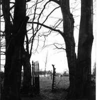 <strong>Mooie zwart-wit zichten  -  Jaren 70</strong><br> ©Herzele in Beeld<br><br><a href='https://www.herzeleinbeeld.be/Foto/2182/Mooie-zwart-wit-zichten-----Jaren-70'><u>Meer info over de foto</u></a>