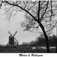 <strong>Mooie zwart-wit zichten  -  Jaren 70</strong><br> ©Herzele in Beeld<br><br><a href='https://www.herzeleinbeeld.be/Foto/2189/Mooie-zwart-wit-zichten-----Jaren-70'><u>Meer info over de foto</u></a>