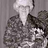 <strong>Kaarters  -  1973 t.e.m. 1977</strong><br> ©Herzele in Beeld<br><br><a href='https://www.herzeleinbeeld.be/Foto/2279/Kaarters-----1973-t.e.m.-1977'><u>Meer info over de foto</u></a>