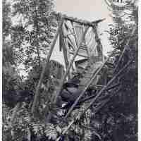 <strong>Buysesmolen in verval</strong><br>1976 ©Stichting Levende Molens, Roosendaal (NL)<br><br><a href='https://www.herzeleinbeeld.be/Foto/2382/Buysesmolen-in-verval'><u>Meer info over de foto</u></a>